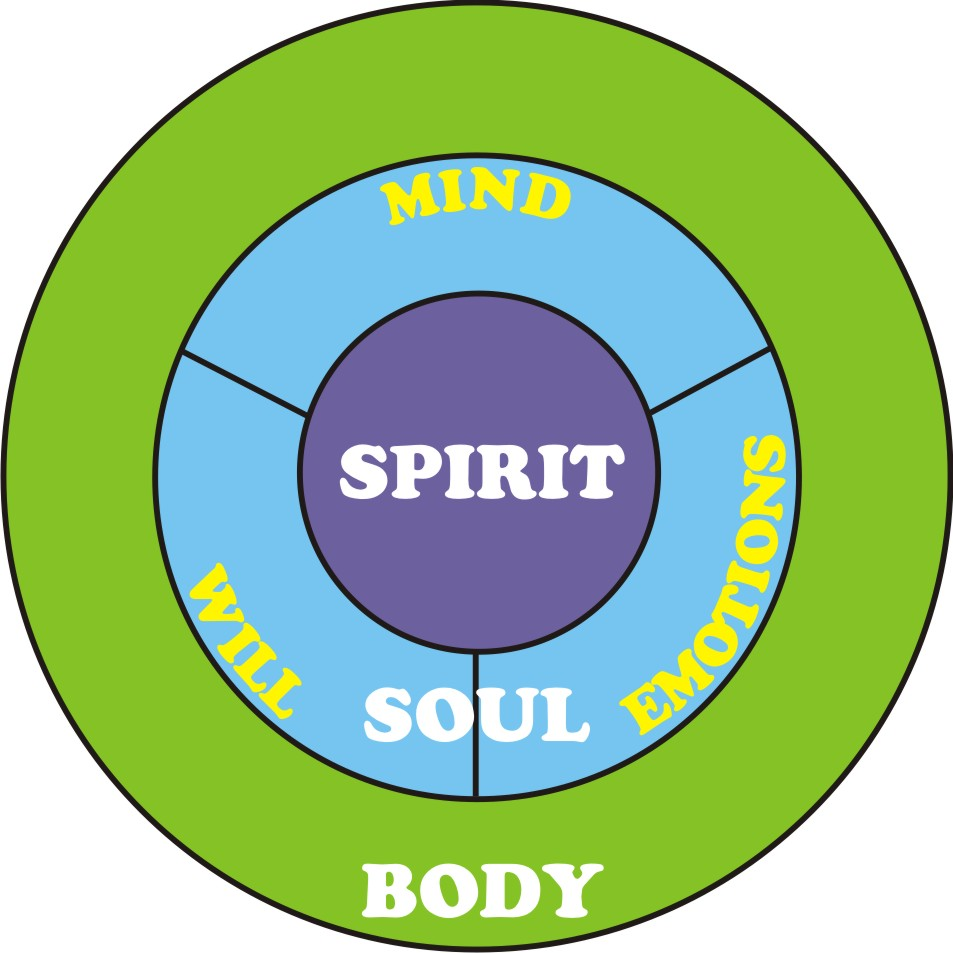 free body and soul free Applied mathematics: body & soul is a mathematics education reform project  developed at chalmers university of technology and includes a  free preview.