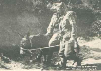 simpson-donkey