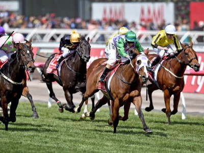 Melb cup 2015 400px