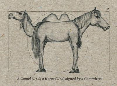 Camel & horse 1 400px