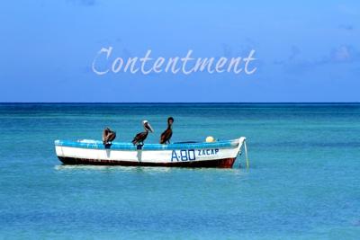 Contentment 2 400px