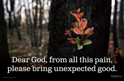 Dear God, from all this pain, please bring unexpected good