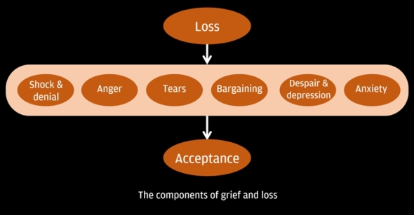 The components of grief and loss