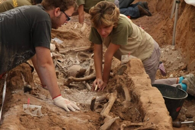 Paleoanthropologists at work