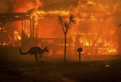 Wildfire in NSW, Australia, January 2020