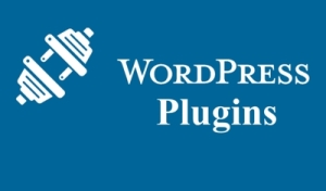 Plugins are used to add new features to a WordPress website