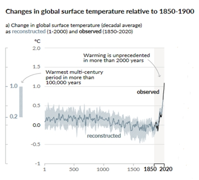 """Are the IPCC cherry-picking proxy atmospheric temperature data to produce a """"hockey stick"""" shape that is rare in the raw data?"""